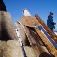 Гигантскую шаньгу испекут на пикнике под открытым небом в Коми