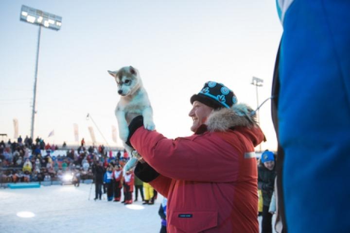 На Камчатке наградили победителей детской гонки на собачьих упряжках