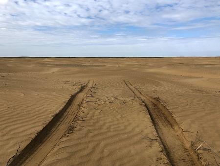 Белое солнце ногайской пустыни