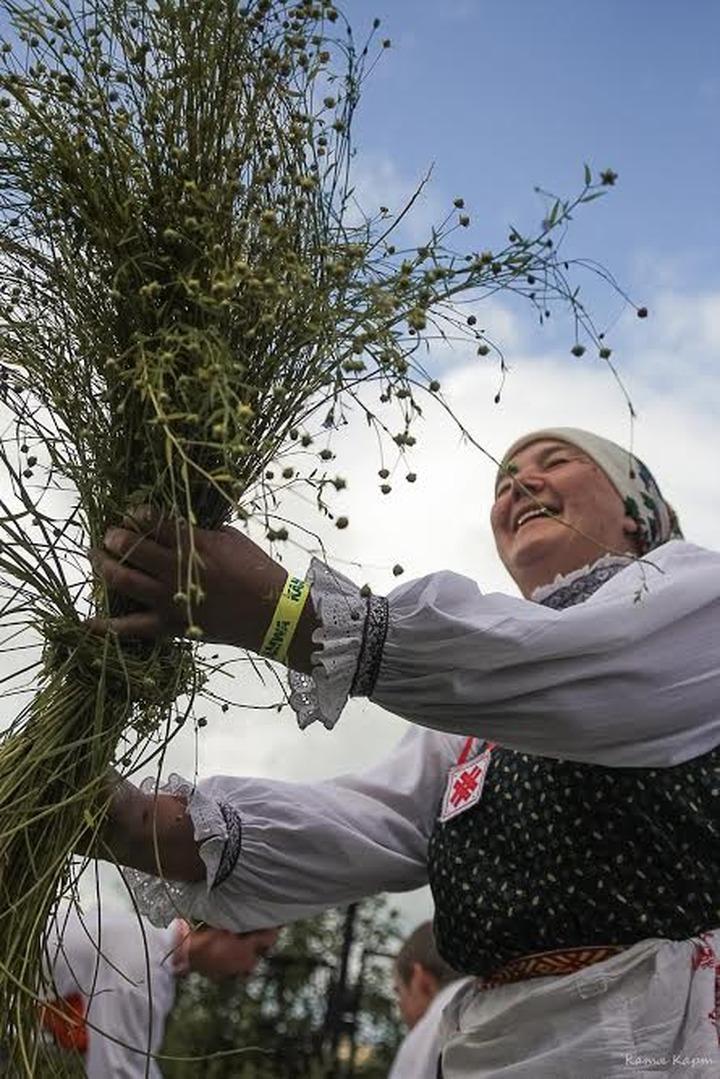 "К фестивалю  KAMWA в ""Хохловке"" посеют рожь, овес и пшеницу"