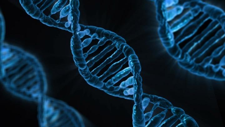Генетики из Кызыла начали изучать генофонд представителей тувинских родов