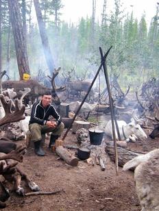 Программу по развитию таежного оленеводства предложили разработать в Иркутской области