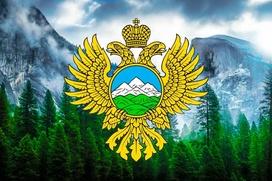 Путин упразднил Минкавказ и сохранил ФАДН