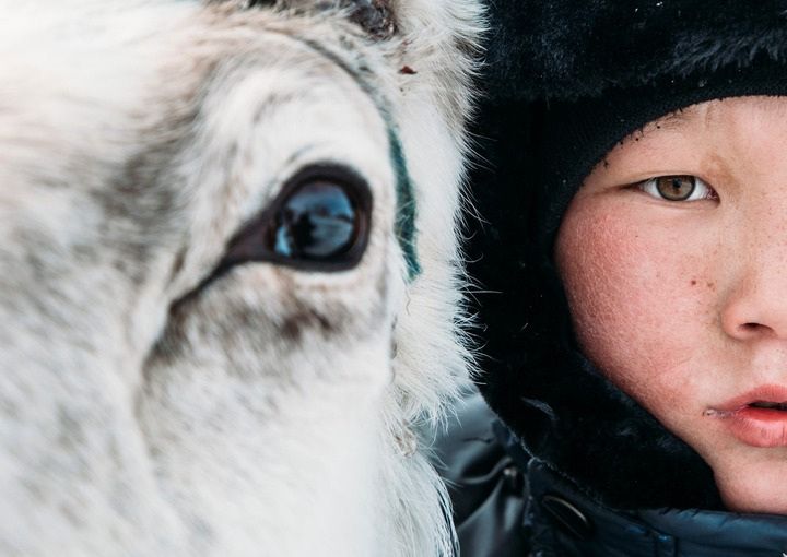 Россия и Монголия совместно займутся оленеводством в Якутии