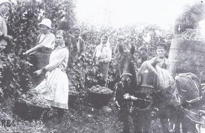 Семейные хроники немцев Кавказа представят на фестивале в Пятигорске