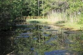 Автор лучшей фотографии священного природного места получит тысячу евро