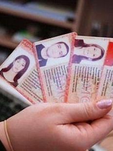 Глава ФМС: Система патентов для мигрантов оправдала себя