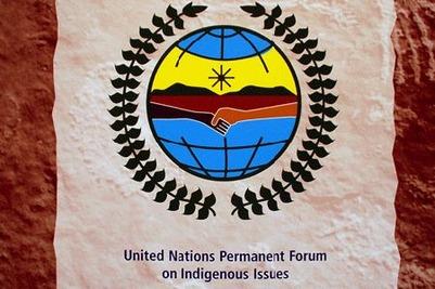 Тувинский ученый стала членом постоянного форума ООН по вопросам коренных народов