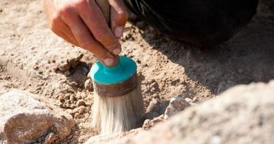 Уникальное сибирское захоронение нашли в Красноярском крае