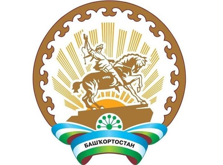 Совет аксакалов Башкирии: Оптимизация школ и медучреждений подрывает благополучие коренного народа республики