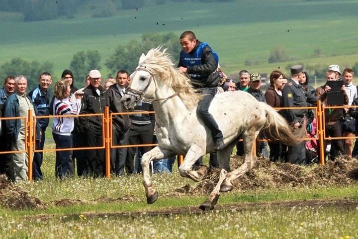 На Среднем Урале отметили марийский Сабантуй