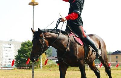 Соревнования по джигитовке и конное шоу состоятся на фестивале казачьей культуры в Смоленской области