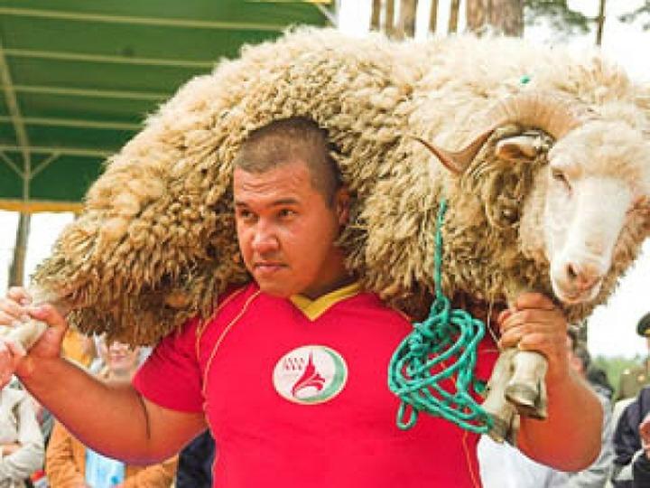 В Татарской Каргале отгуляли Всероссийский сельский Сабантуй