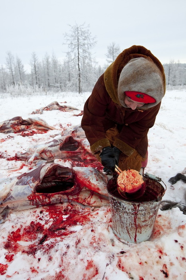 Ханты и манси поделятся с туристами кровью