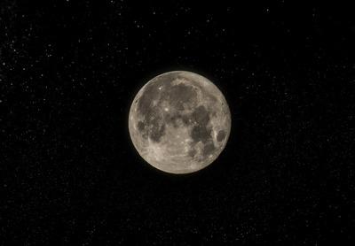 Ханты и манси проведут обряд приношения Луне в Югре