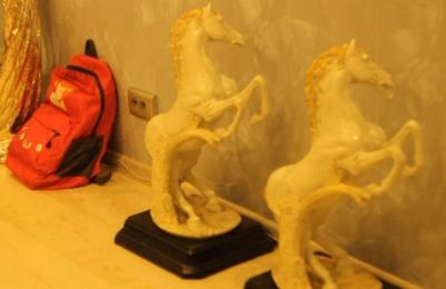 В Новосибирске приставы арестовали у цыган фарфоровых коней