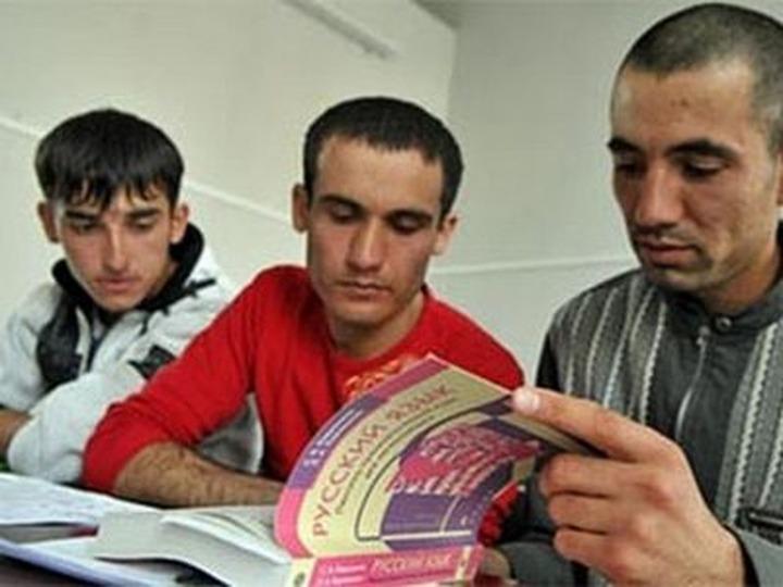 В ФМС отметили низкую мотивацию мигрантов изучать русский язык