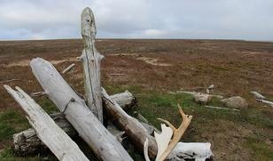 Ряд священных мест Ямала вошли в реестр культурного наследия
