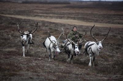 Ямальские депутаты решили вернуть тундровикам социальную пенсию по старости