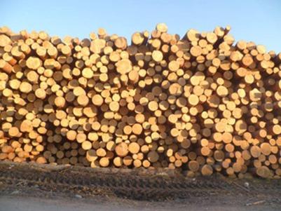 Массовая драка иркутских сельчан и китайцев из-за цены на древесину закончилась ДТП и поджогом