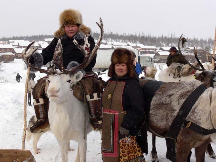 Численность аборигенов на Ямале выросла на 11% за 10 лет