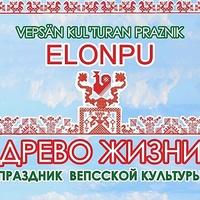 Карельский ЦИК отказался печатать бюллетени на вепсском языке