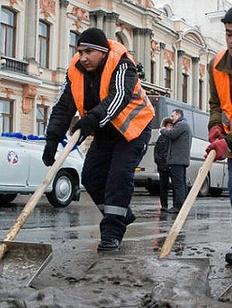Миграция: взгляд из Сибири