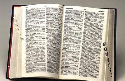 Суд отказал чукчам в иске к составителям толкового словаря русского языка