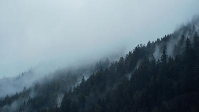 Эксперты: Традиционное природопользование может сократить выбросы углекислого газа