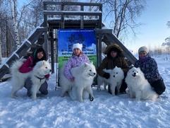 Детей в Сургуте покатали на санках с собаками коренных народов