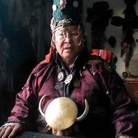 Россельхоз оштрафовал шаманов, которые устроили ритуал с сожжением верблюдов
