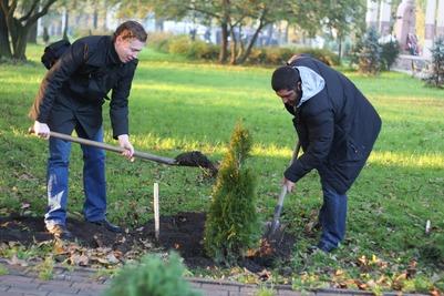 Евреи Евпатории высадили десятки деревьев