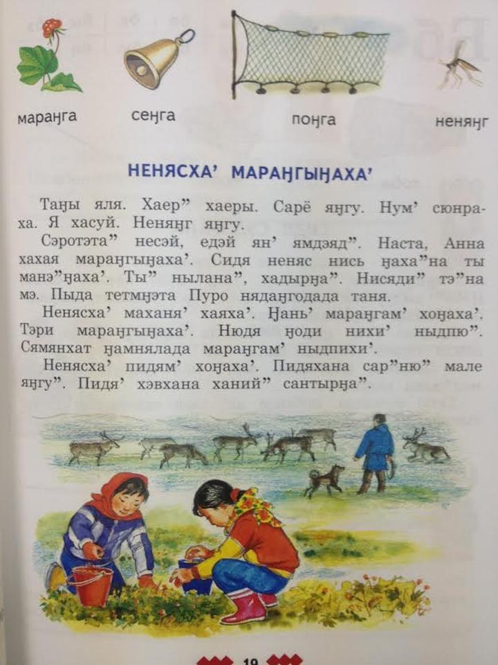 Началась разработка новых учебников на ненецком и хантыйском языках