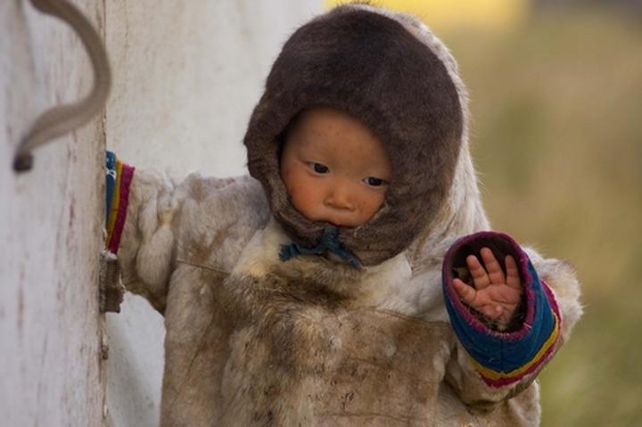 Депутатов попросили помочь кочевникам усыновлять детей