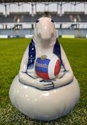 Гжельского Ждуна выпустили к Чемпионату мира по футболу