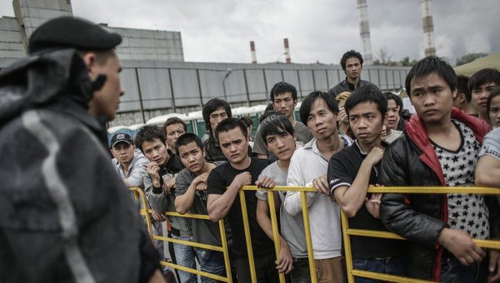 В 2013 году мигранты получили 1,5 млн патентов на работу и 135 тысяч российских паспортов