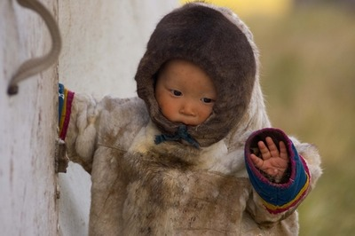 Шесть детей кочевников ЯНАО доставлены в больницу из-за сибирской язвы
