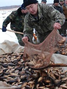 Минсельхоз попросили упростить доступ к рыболовству для коренных народов