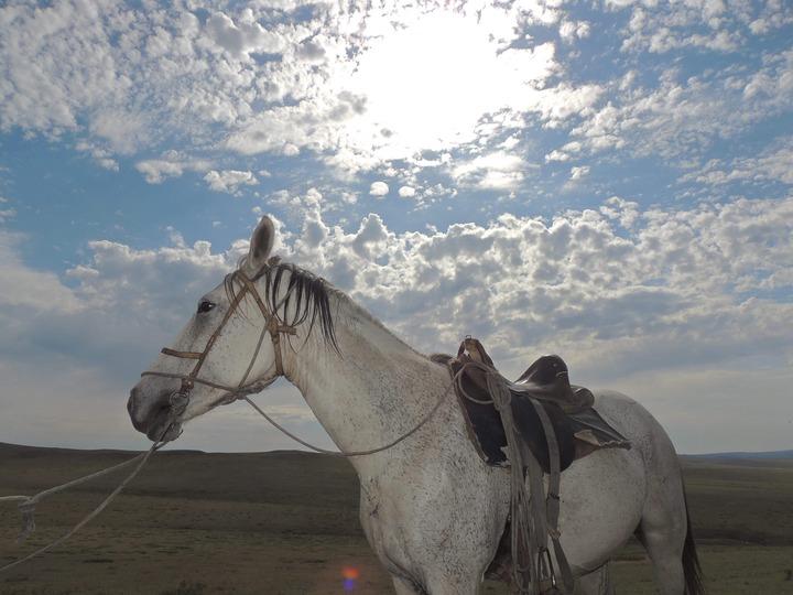 Обряд Обоо тахилга в Кяхтинском районе Бурятии
