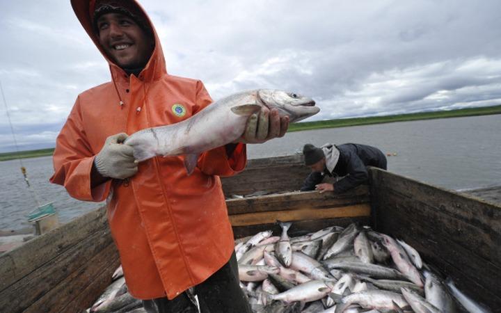 Саамы попросят Минсельхоз отменить новые правила рыбалки для аборигенов