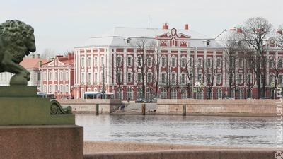 В СПбГУ разобрали экспозицию об уличенном в героизации нацизма востоковеде