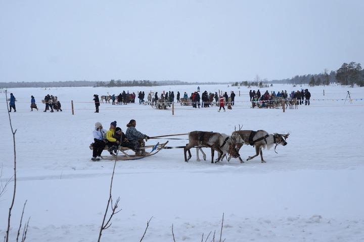 Олень помог Деду Морозу в Сургуте выбрать новогодний подарок