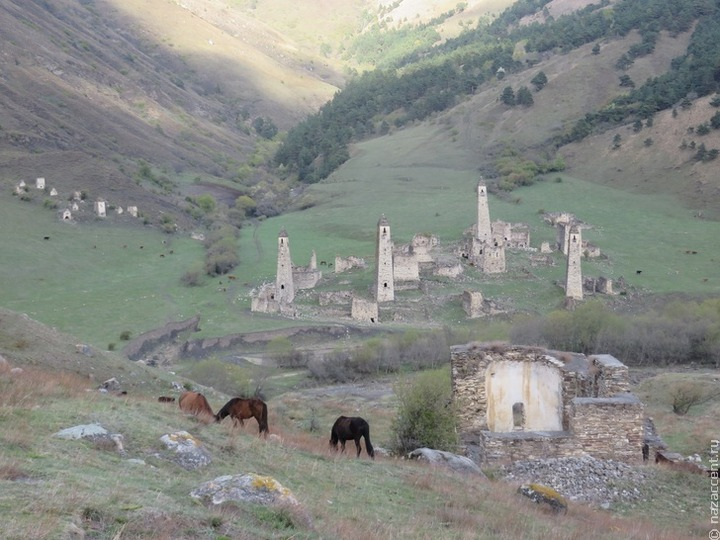 Волонтеры помогут восстановить родовые башни Кавказа