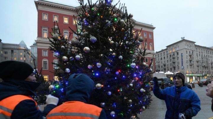 Трудовые мигранты неудачно украсили елки в Москве