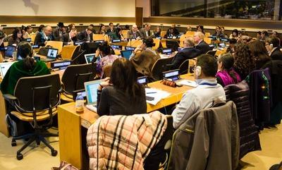 Представитель Карелии предложил ООН объявить год языков коренных народов