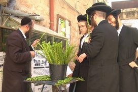 Евреи Москвы проведут автомарафон в честь праздника Суккот