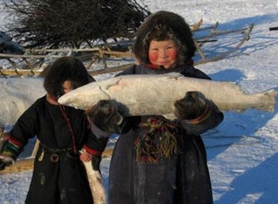 В Совете Федерации обсудили регулирование традиционного рыболовства коренных народов