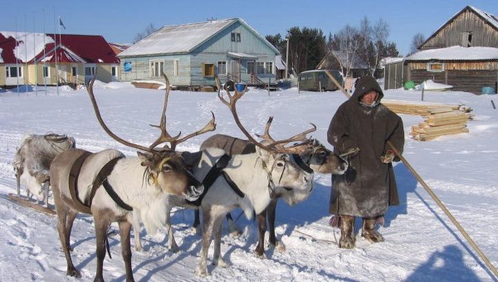 Уровень жизни среди малочисленных народов Севера, Сибири и Дальнего Востока снизился