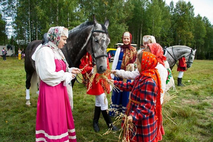 В день памяти святых Флора и Лавра лошадей накормят праздничными бутербродами