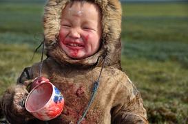Ученые разработали систему питания для коренных северных народов Ямала